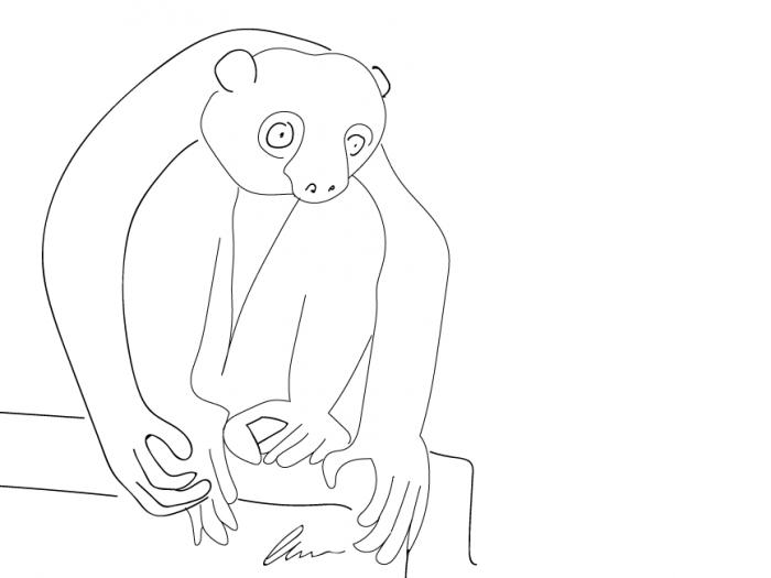 Ein Lemur hockt auf dem Bettrahmen