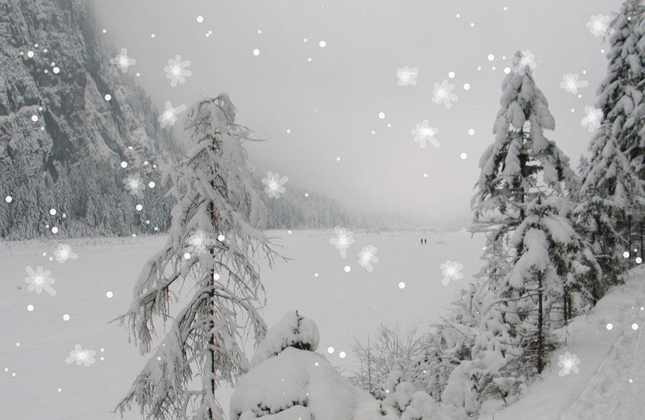 Winterlandschaft mit Schneeflocken