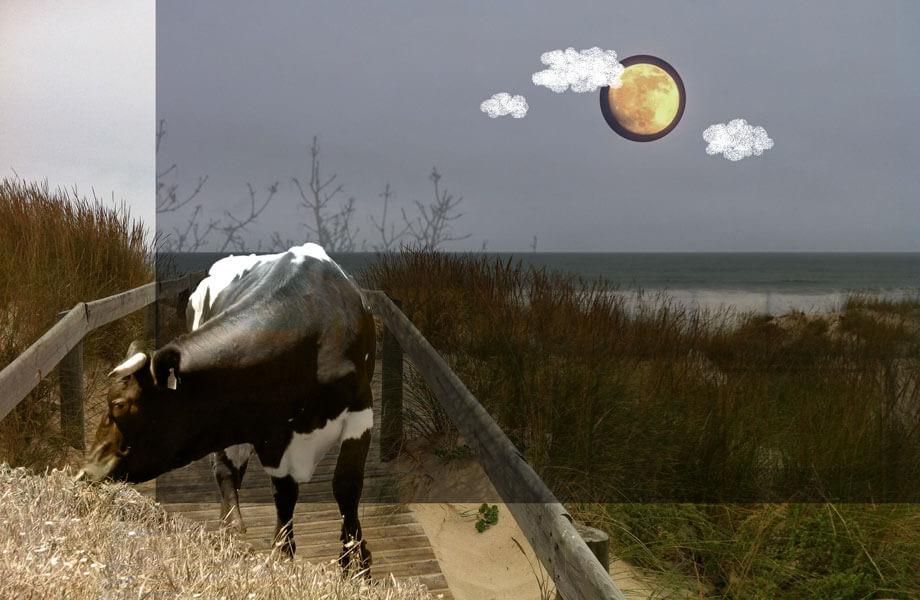 Märchen-Mond