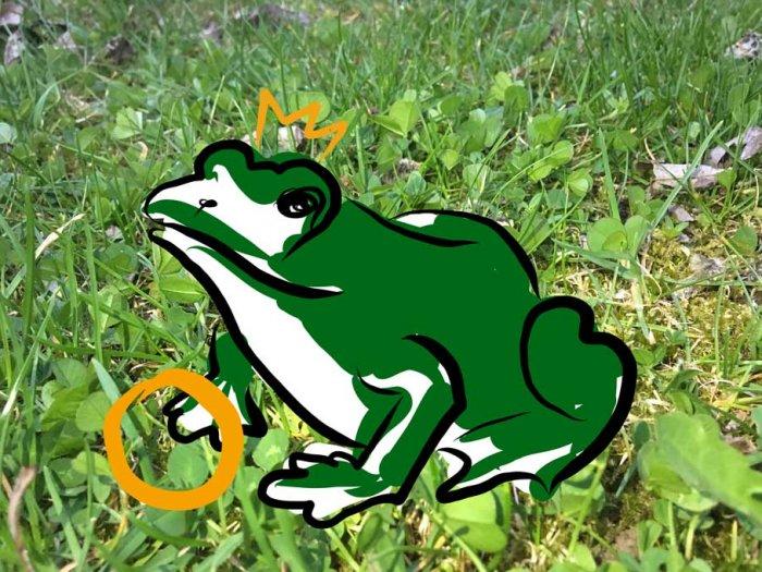 Die Sehnsucht nach dem Froschkönig