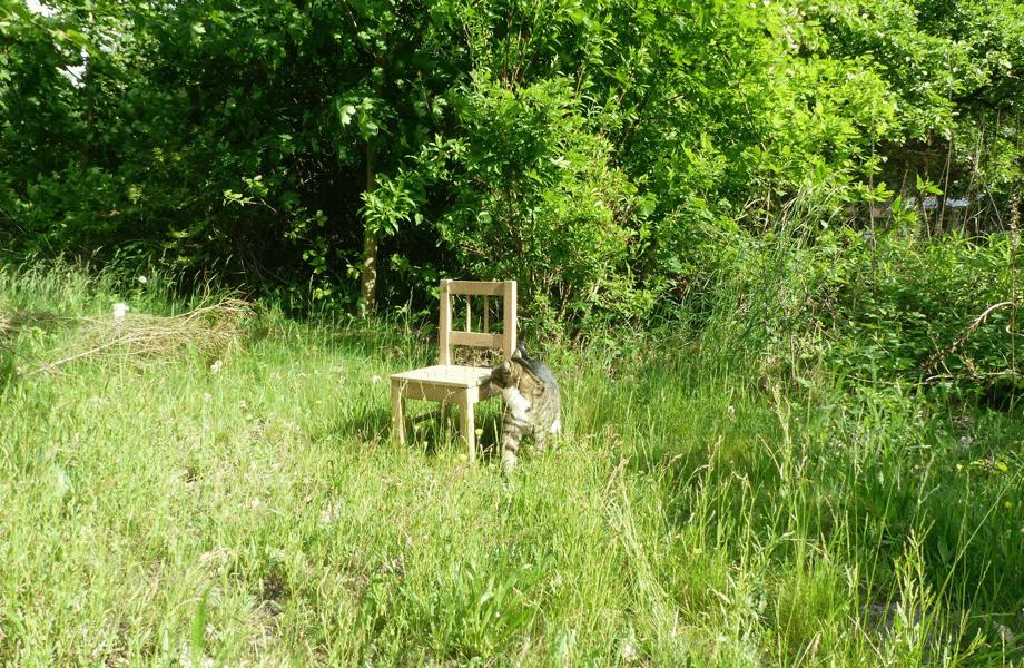 Kinderstuhl im Gras