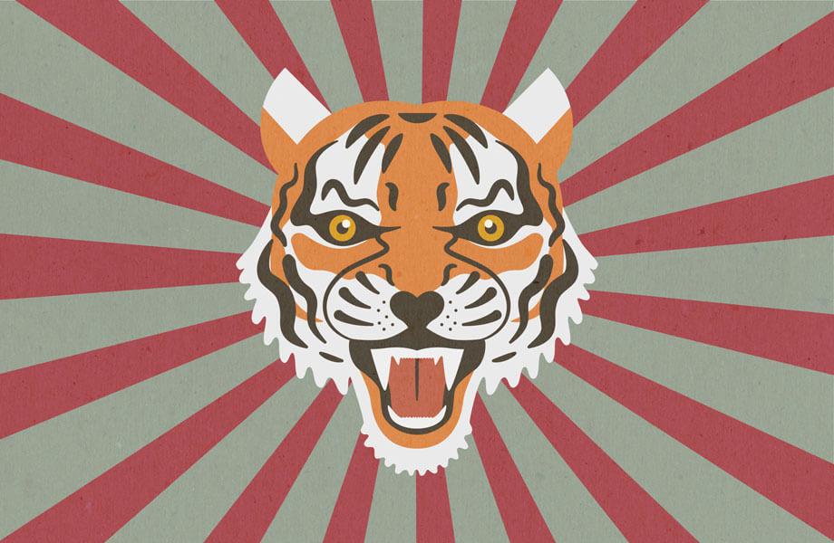 Tigerkopf mit gefletschten Zähnen. Illustration: Felicitas Labenz