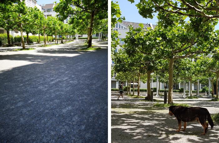 Dasselbe Motiv, zwei Sichtweisen. Foto links: Nikolai Schulz, Foto rechts: Waltraut Prünner