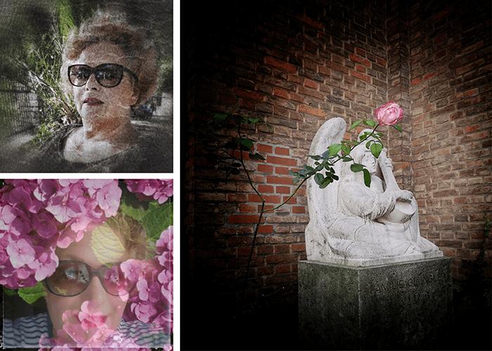 Fotos und Bildbearbeitung links: Irmgard Weber. Foto und Bildbearbeitung rechts: Nikolai Schulz.