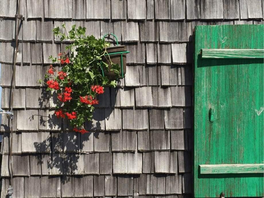 Eine Schindelwand mit roten Blumen, die in einem Topf an der Wand hängen, und grünen Fensterläden.