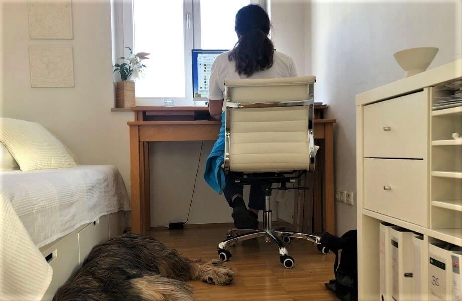 Eine Frau sitzt am Schreibtisch im Homeoffice, auf den Boden schläft ein Hund.
