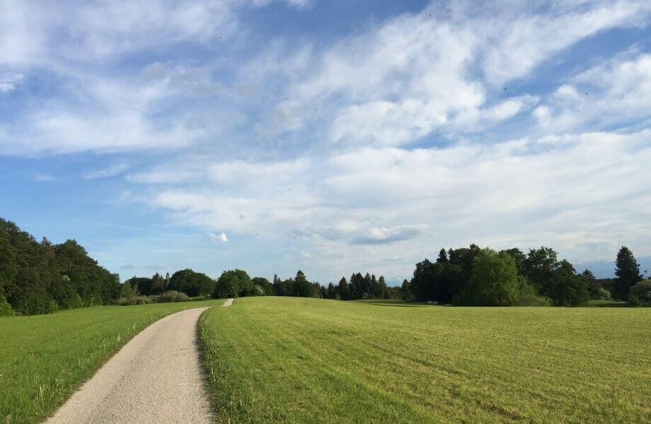 Ein Feldweg in einer grünen Wiese führt in die Ferne, im Hintergrund Berge.